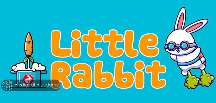 ارز دیجیتال LITTLE RABBIT